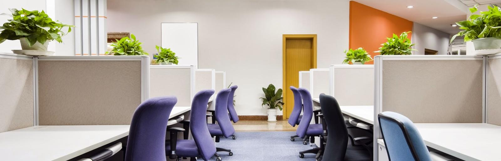Întreținere sedii companii